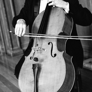 The Cotswold Ensemble: Solo Cellist for hire. Photo: Gabrielle Macmillan